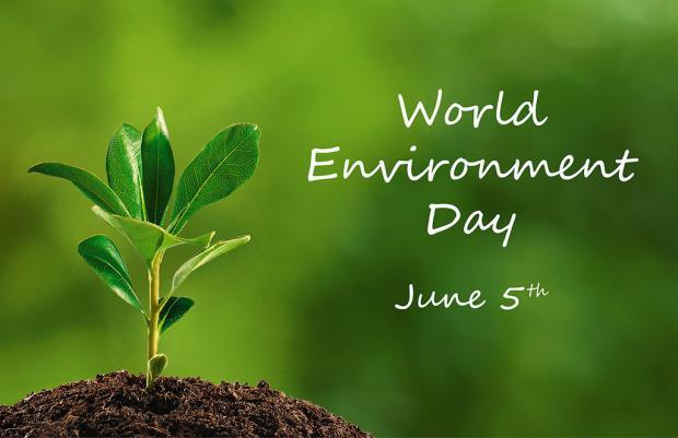 Risultati immagini per Giornata mondiale dell'Ambiente
