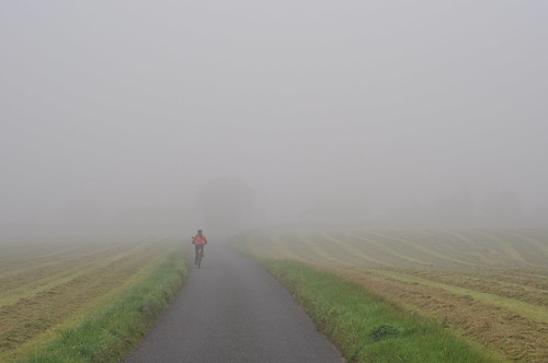 Foggy Ride