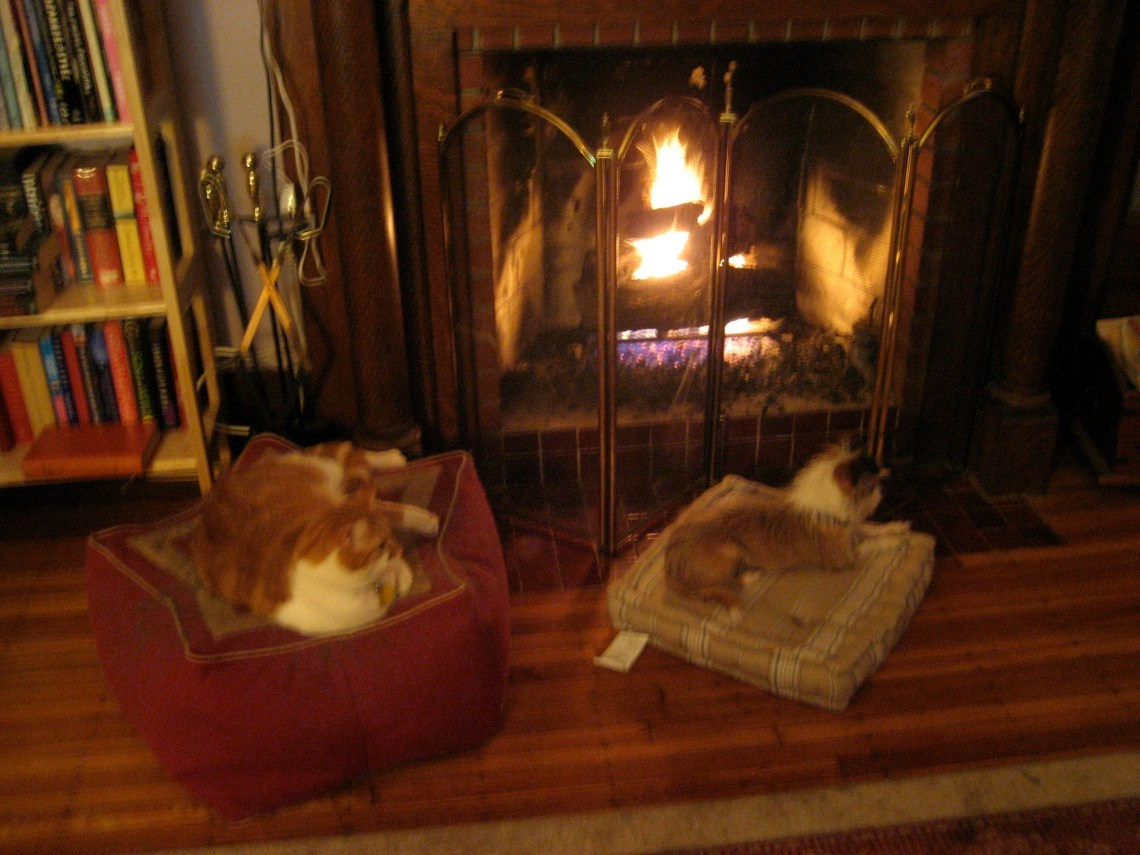 Lounging by the fireplace