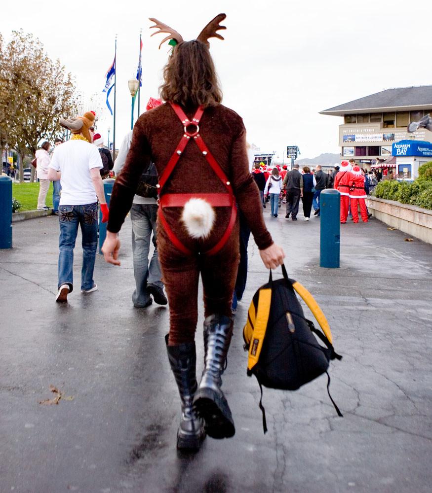 Reindeer Butt