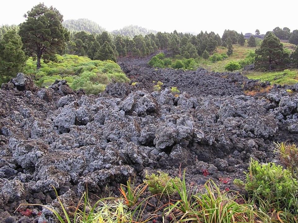 rio de lava Camino Real de la Costa-Isla de la Palma
