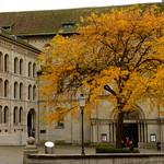 06 Viajefilos en Zurich, Suiza 25