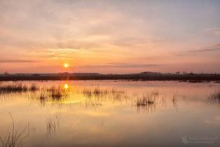 Sunset Haaksbergerveen