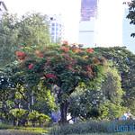 01 Lucia Viajefilos en Bangkok 02