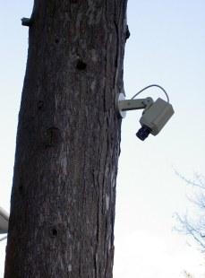 Very Close CCTV