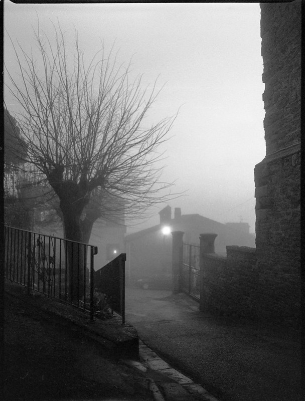 avenue, dusk, fog, streetlight, Cortona, Tuscany, Italy, Mamiya 645 Pro, Ilford HP5+, Moersch Eco Film Developer, late December 2015