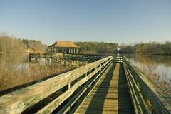 Lake Cunningham Dock