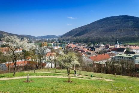 Purkersdorf im Panorama
