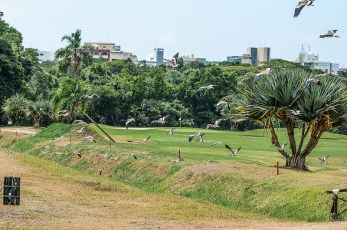 GOLF_CLUB_RIVIERA (69)