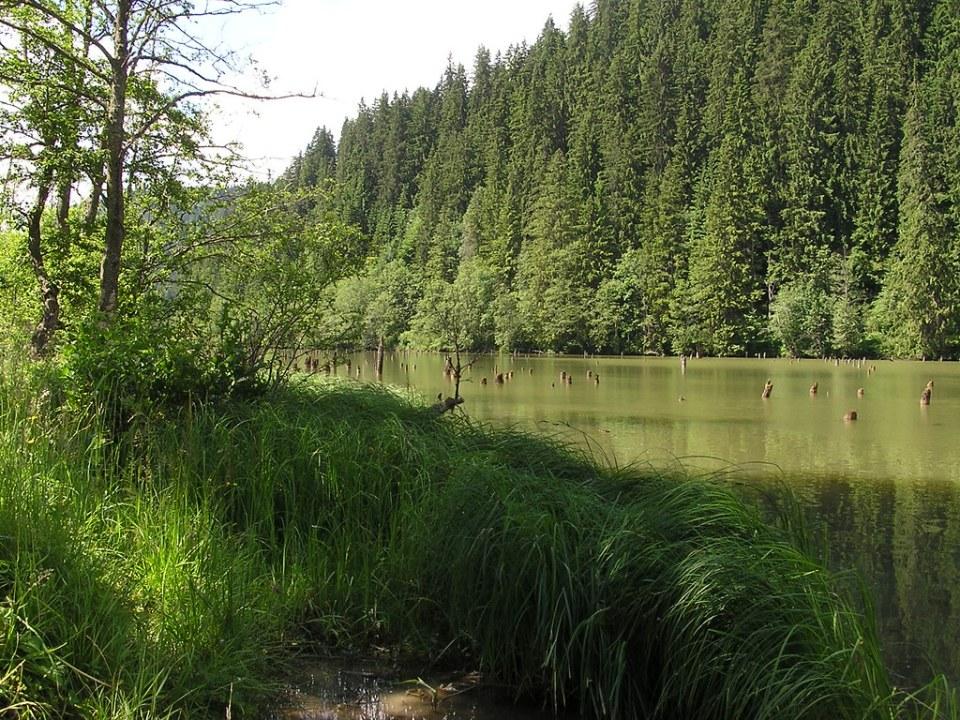 Lago Rojo Rumania 7