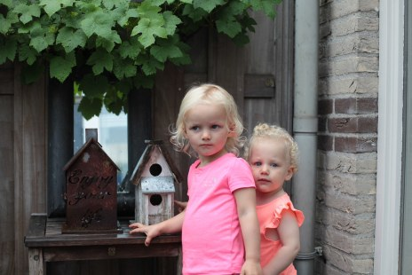 Nieces (Sliedrecht, Holland, 2018)