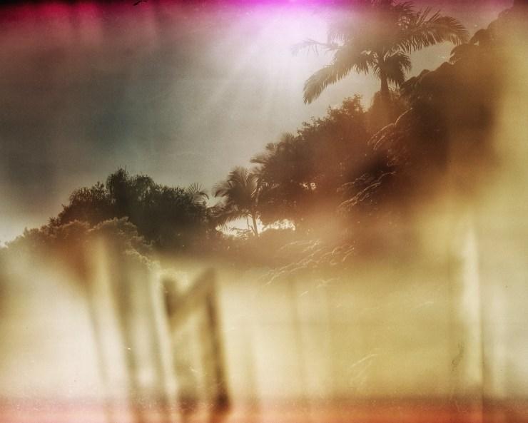 Voigtlander Bessa II with cross processed expired Fuji Provia colour reversal film