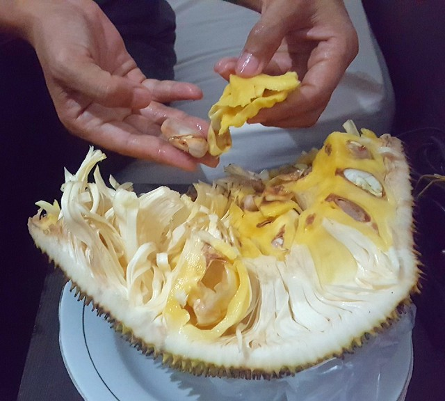Jackfruit: the goal is to eat the yellow bits around the large seeds by bryandkeith on flickr