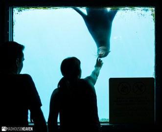 Barcelona Zoo - 0031