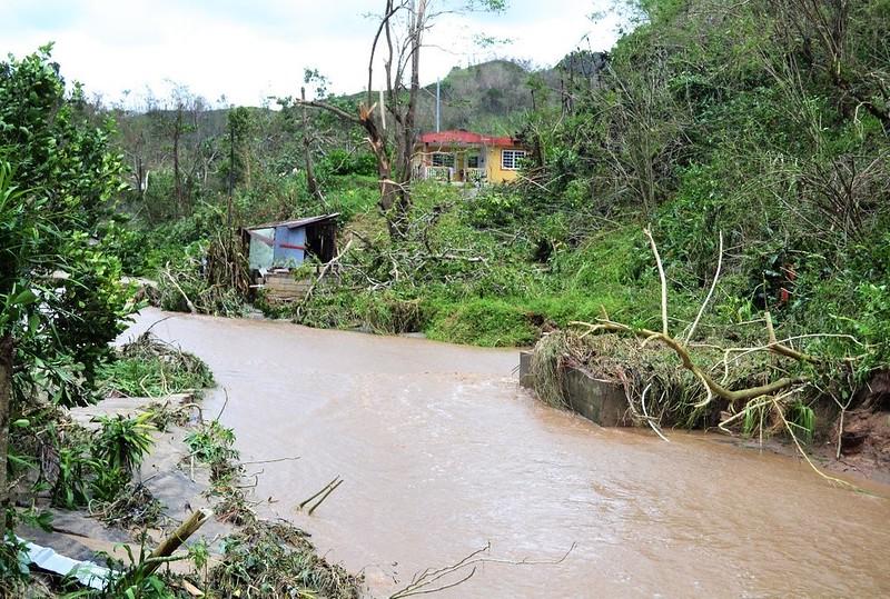 Barrio Zamas, sector Ciénega, Jayuya