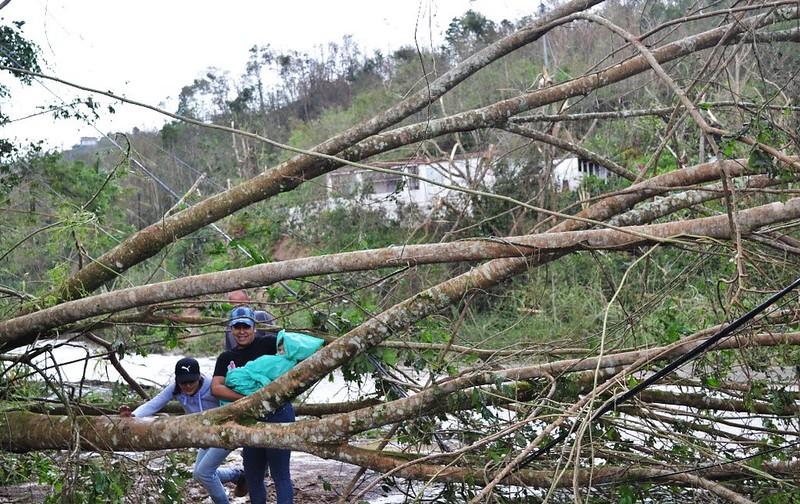 Luego del catastrófico huracán María