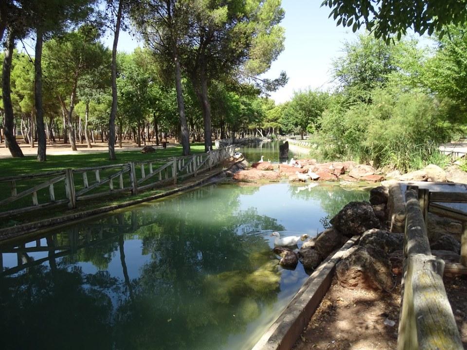 estanques en Parque Alces Alcazar de San Juan Ciudad Real 04