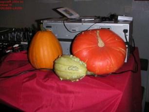 11.09.2004 der wiener salon frisch-saftig-steirisch