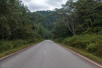 Gabon is voor ongeveer 80% bedekt met tropisch regenwoud, dus het grootste deel van de rit zag ik dit door de voorruit.