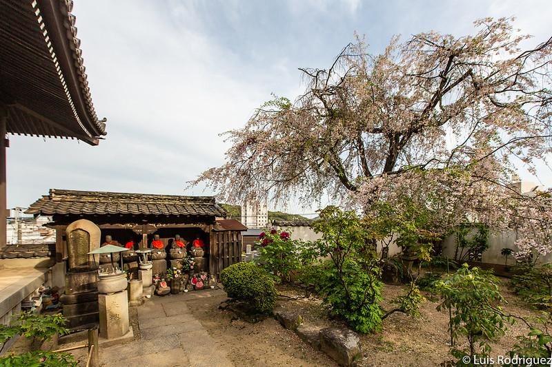 Templo Tenneiji