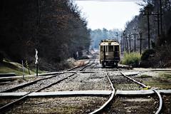 Pelzer Tracks Lomo