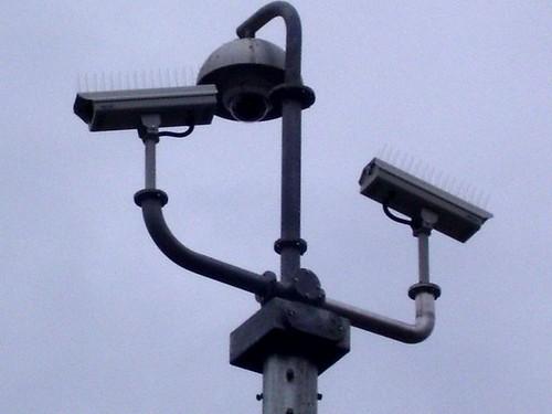 spiky triple surveillance
