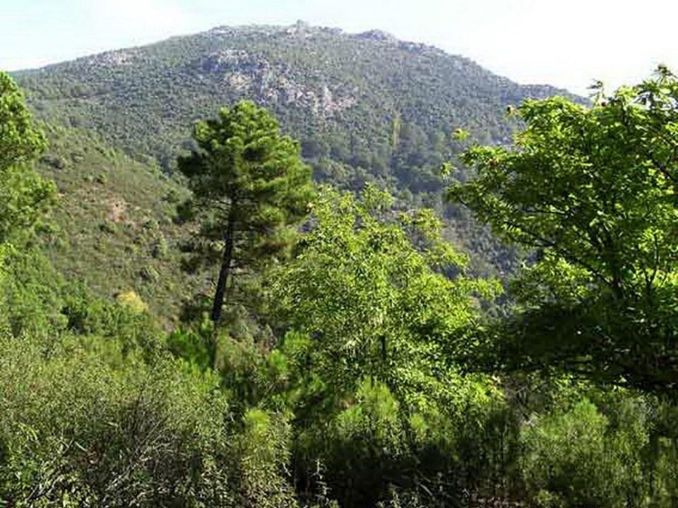 Sierra de San Vicente Toledo 12