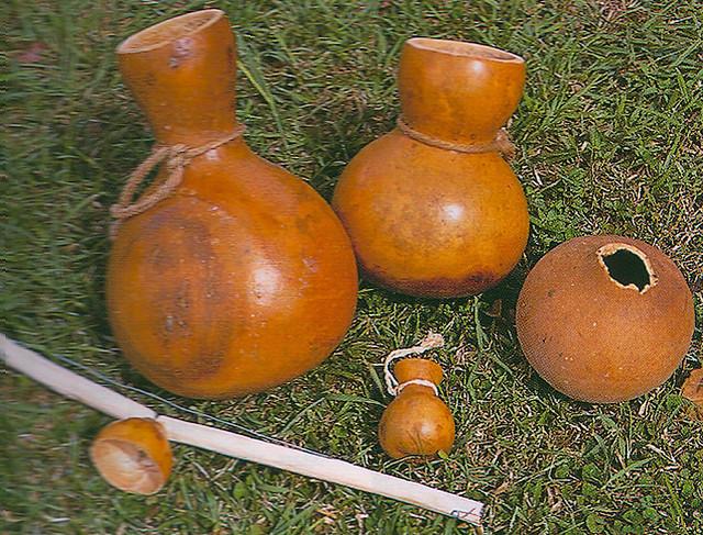 Belambaotuyan Gourd