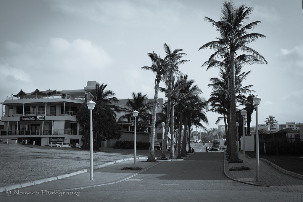 Posts and palms