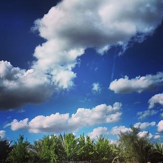 بلادي وان جارت علي عزيزة Haider Turfi Flickr