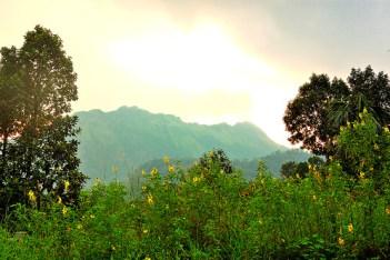 Scenic View - Ponmudi