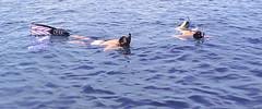 Culebra Snorkeler