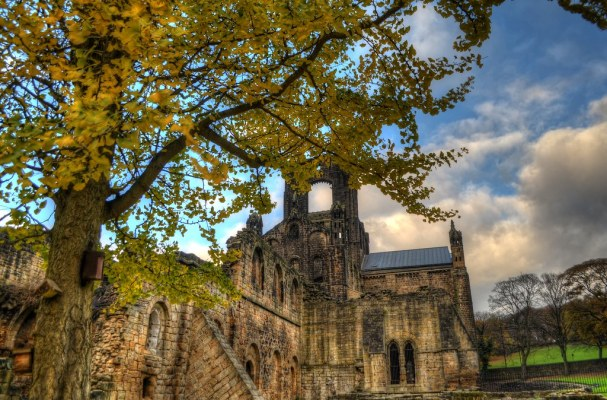 Kirkstall Abbey and Autumn Tree