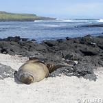 Viajefilos en San Cristobal, Galapagos 042