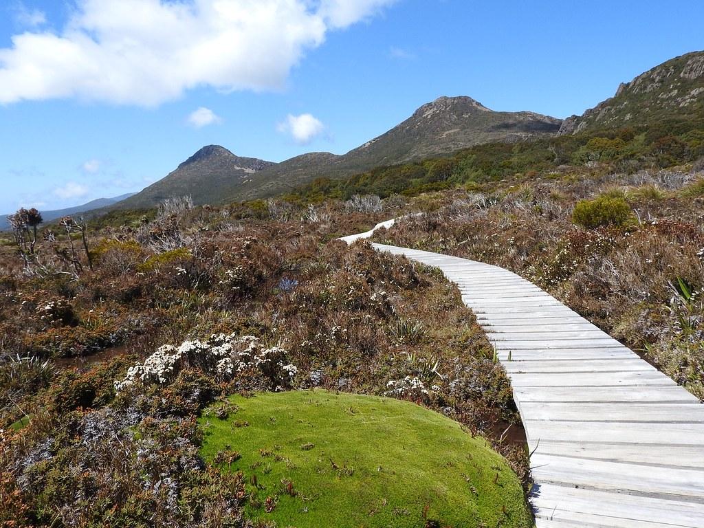 Road Trip en Tasmanie