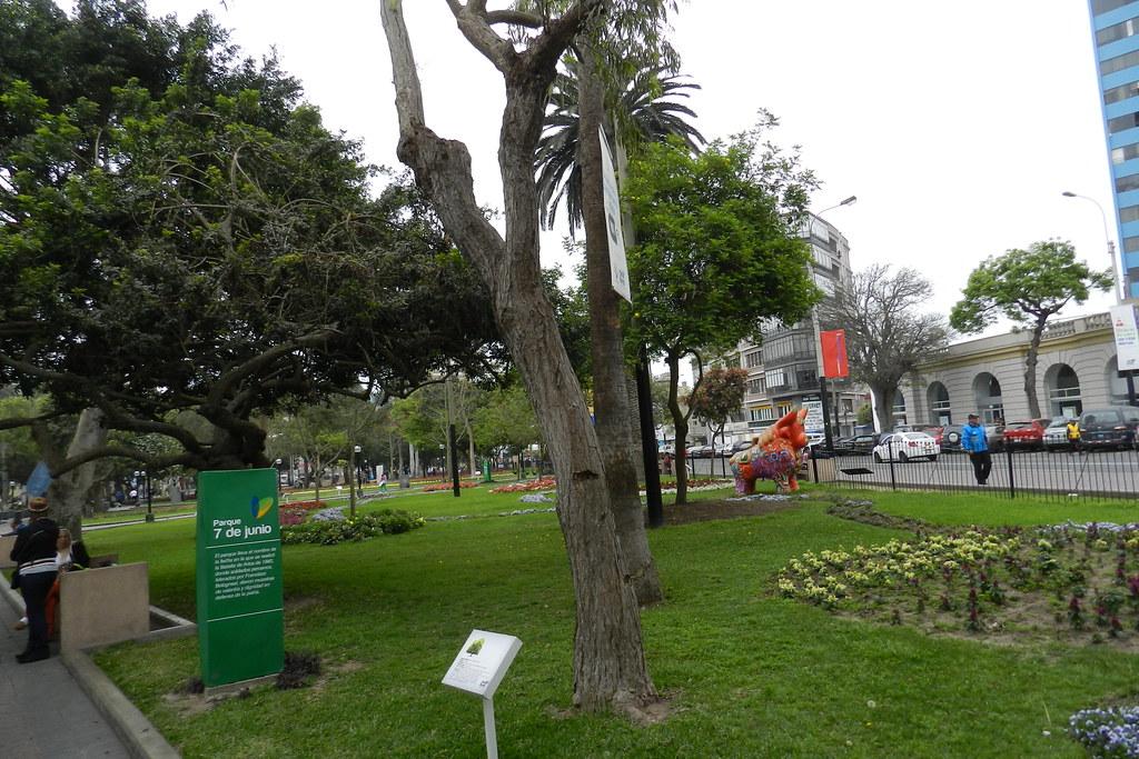 Peru Lima Parque Central de Miraflores Parque Kennedy 04