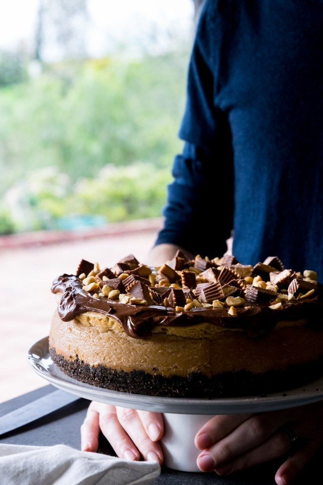you can never have too much chocolate and peanut butter