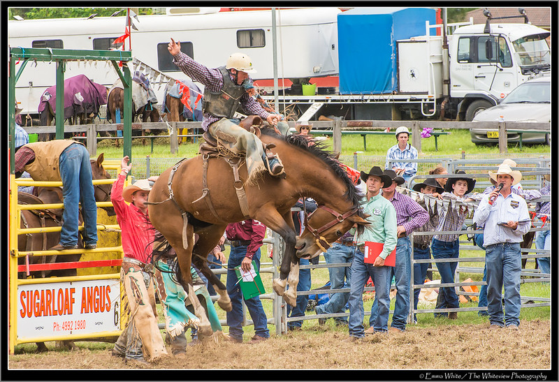 2014_Rodeo_20140412_Dungog_7478