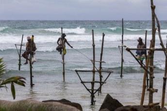 tussen Mirissa en Galle (onze laatste bestemming) zitten deze mannen op palen te vissen voor de toeristen