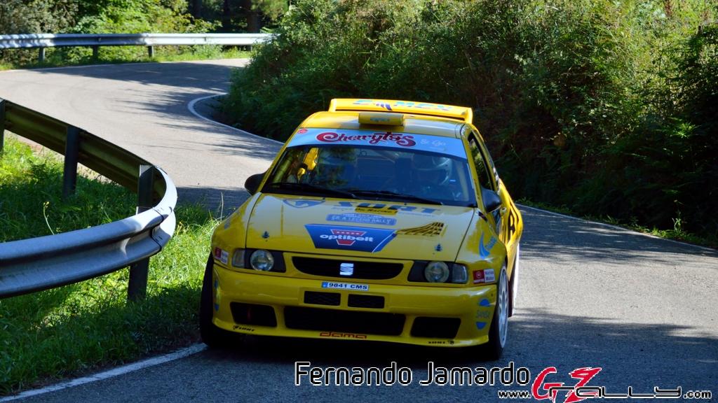 53_rally_princesa_de_asturias_2016_-_fernando_jamardo_185_20160913_1317373889