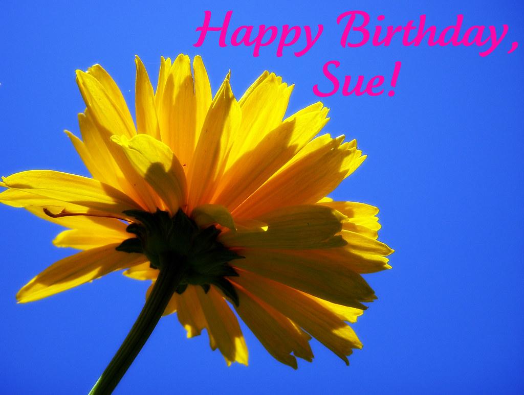Happy Birthday Sue Happy Birthday To You My Dear Fri Flickr