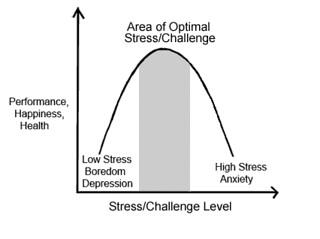 Optimizing Stress
