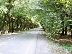 This road, tracing the foothills of the Caucasus, was great, just 50-60km days through amazing scenery and forests.
