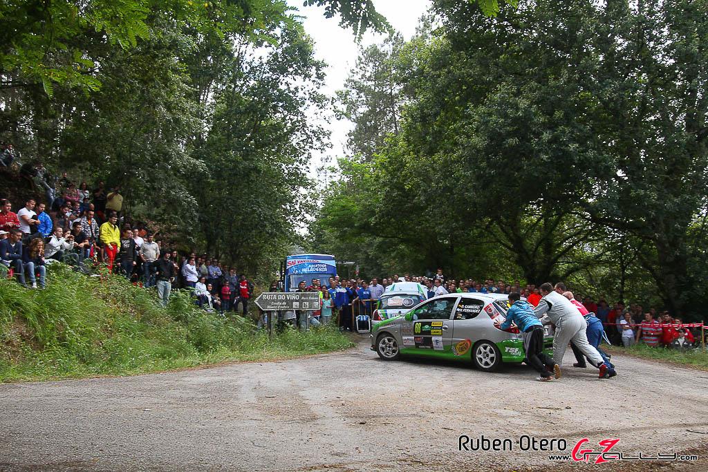 rally_sur_do_condado_2012_-_ruben_otero_57_20150304_1039134343