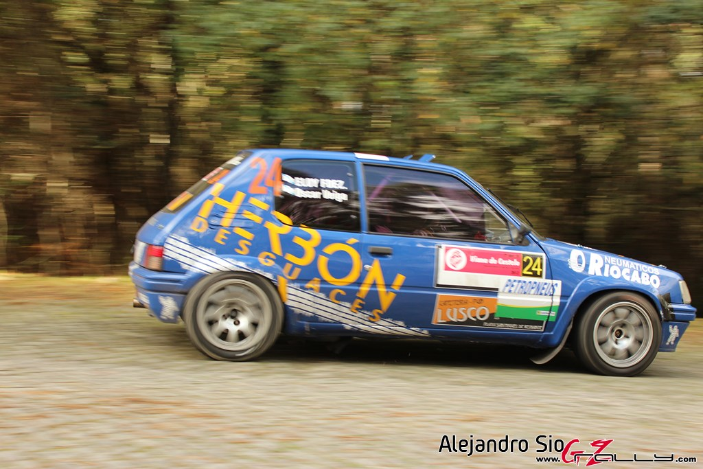 ii_rally_viana_do_castelo_169_20150308_1841145986