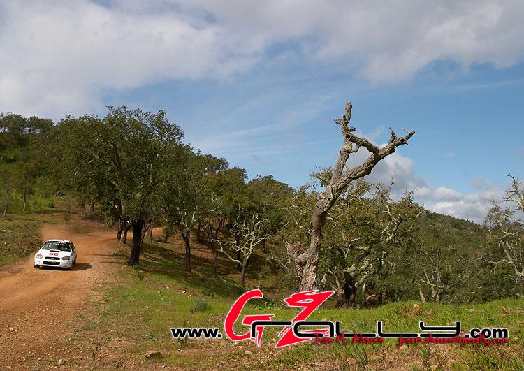 rally_de_portugla_wrc_569_20150302_1662291062
