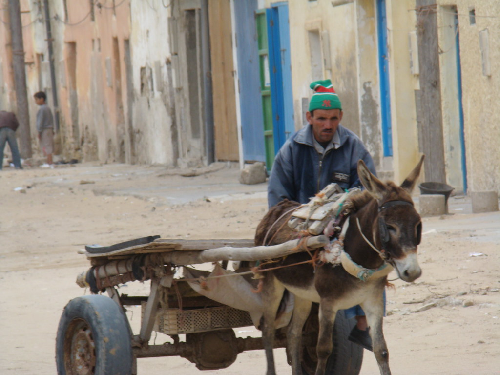 Desierto del Sahara su gente 42