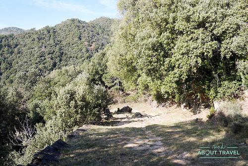 via-romana-capsacosta-27