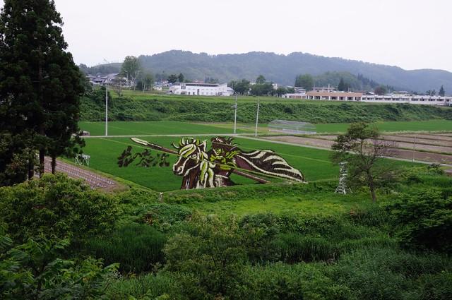 Rice Paddy Field Art in Yonezawa 2015