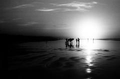Une photo sur Flickr